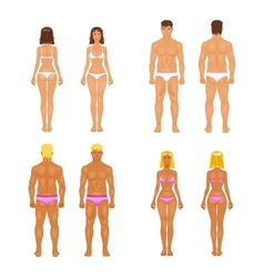Young woman and guy in underwear body templates vector