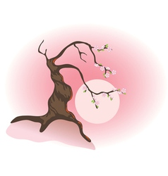 Flowering bonsai vector
