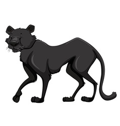 Black panther with happy face vector