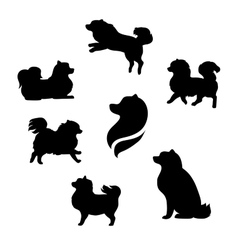 Ddwarf spitz silhouettes vector image vector image