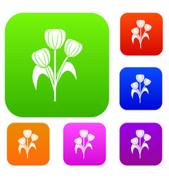 flowers set color collection vector image