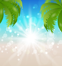 Summer holiday background sunlight and palmtree vector image