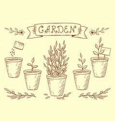 Set of plant in pots vector