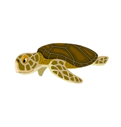 Cartoon isolated sea turtle vector