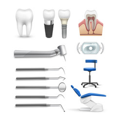 set of dental objects vector image vector image