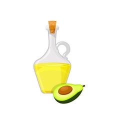 Glass bottle of avocado vegetable oil organic vector