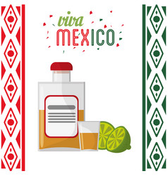 Viva mexico invitation party tequila vector