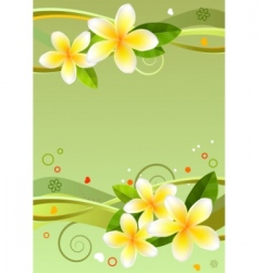 frame with frangipanis vector image