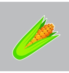 Flat Sweet Corn Icon on a Gray Background vector image