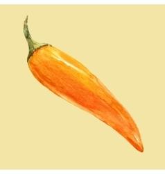 Watercolor hand drawn chilli vector