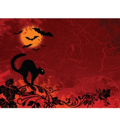 cat bat Halloween vector image