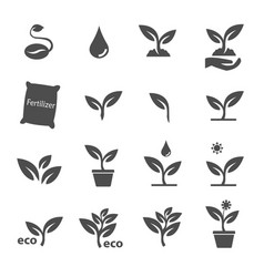 plant and leave icons set vector image
