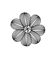 figure flower with oval petals icon vector image