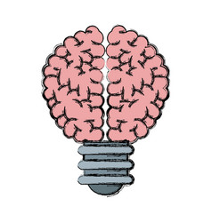 buld brain idea creativity knowledge vector image
