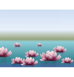 Water lily flower with reflection vector image