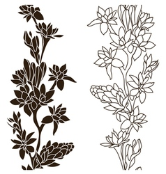 Blooming tuberose vector