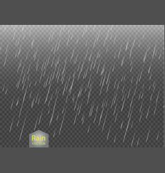 rain transparent template background falling vector image