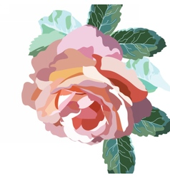Watercolor pink rose flowers isolated vector
