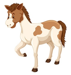 Horse with brown and white fur vector