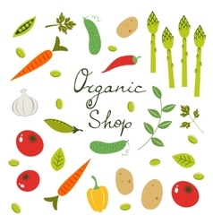 Colorful organic vegetables collection vector