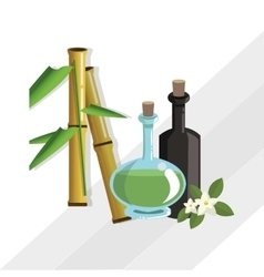 Flat of spa center design vector