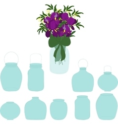 Jars set bouquet of irises in a jar vector