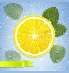 Lemon with mint leaves and water drops vector