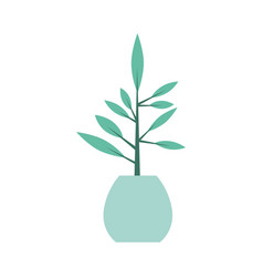 office plant isolated icon vector image vector image