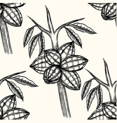 seamless pattern of cocoa vector image