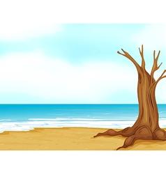 Seashore tree stump vector