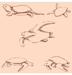 Turtles Pencil sketch by hand Vintage colors vector image