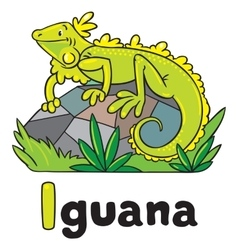 Little iguana for ABC Alphabet I vector image