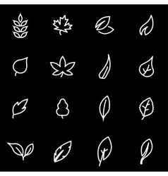 line leaf icon set vector image vector image