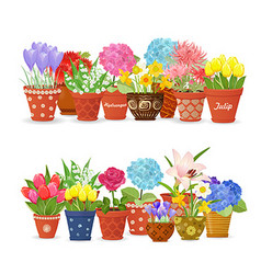 Lovely collection different flowers planted in vector