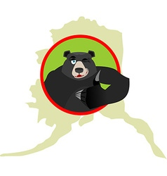 American black bear baribal and Alaska Grizzlies vector image vector image