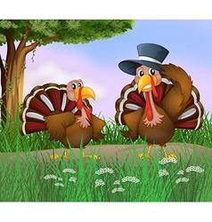 Cartoon turkeys vector