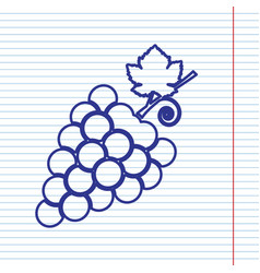 Grapes sign navy line icon vector