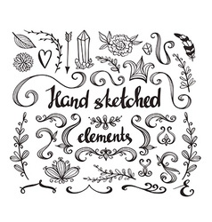 Hand Drawn vintage floral elements Set of flowers vector image