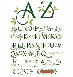 Ornate Swash Alphabet with Leaves vector image