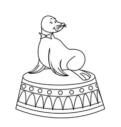 Sealion cartoon animal icon vector