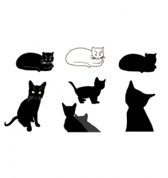 Cat design elements vector