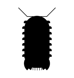 Centipede millipede cartoon posing flat insect vector