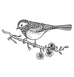 Hand drawn ornate bird on sakura branch with vector