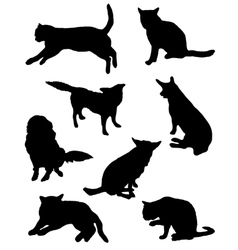 Collection of silhouettes of a cat and dog vector