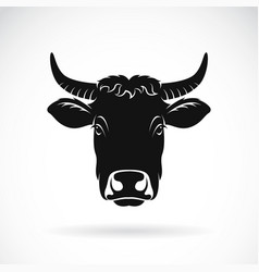 Cow face on white background farm animal vector