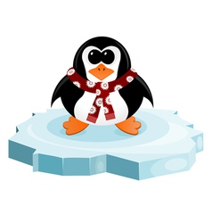 Penguin on an ice floe vector image