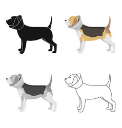 dog with elizabethan collar icon in cartoon style vector image