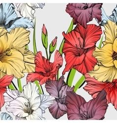 Abstract floral blooming gladiolus background vector