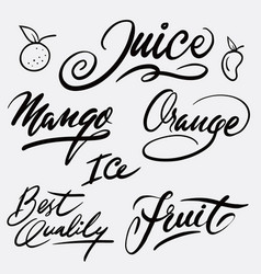 Juice and fruit hand written typography vector