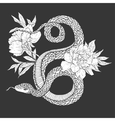Snakes and flowers tattoo art coloring books vector